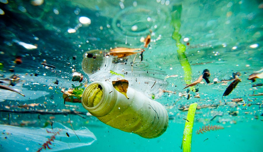 Ocean pollution and what can we do about it?